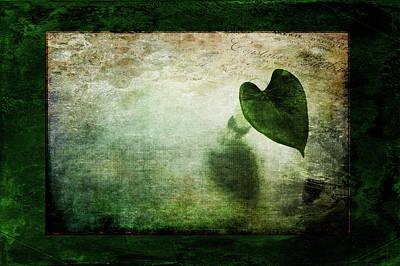 Photograph - Green Modesty by Randi Grace Nilsberg