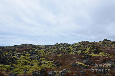 Photograph - Green Moss And Black Volcanic Rock In A Lava Field  by DejaVu Designs