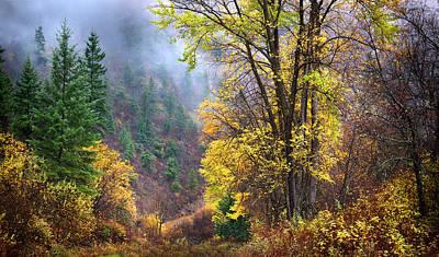 Photograph - Green Mountain Fall by John Poon