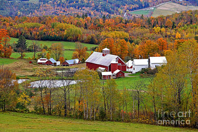 Photograph - Green Mountain Farm by Butch Lombardi