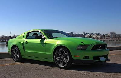 Photograph - Green Mustang by Davandra Cribbie