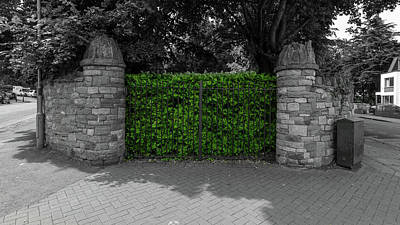 Photograph - Green Nature Behind The Gate by Jacek Wojnarowski