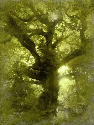 Green Oak Art Print
