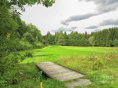 Photograph - Green On Course by Patricia Hofmeester