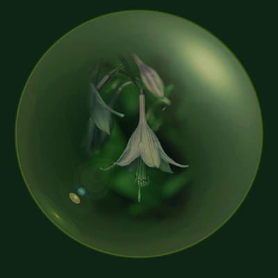 Digital Art - Green Orb Flower by Richard Ricci