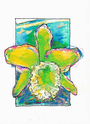 Orchid Green Cattleya Art Print