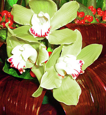 Photograph - Green Orchids Arrangement by Merton Allen
