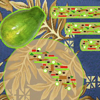Cookbook Digital Art - Green Papaya Rolls With Grilled Flank Steak by James Temple