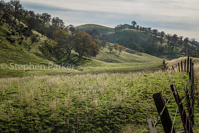 Photograph - Green Pastures 8b5174 by Stephen Parker