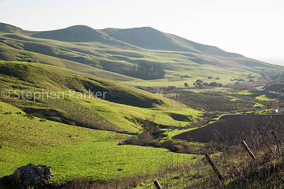 Photograph - Green Pastures 8b5532 by Stephen Parker