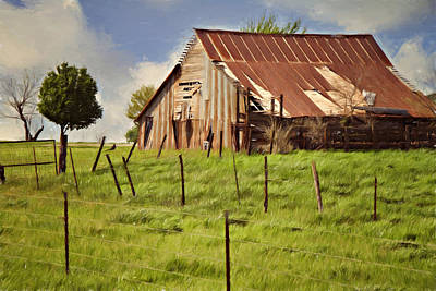 Photograph - Green Pastures by Lana Trussell