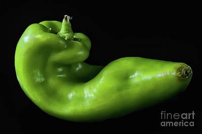 Photograph - Green Pepper 1 by Mark Miller