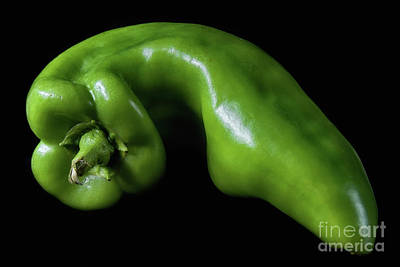Photograph - Green Pepper 3 by Mark Miller