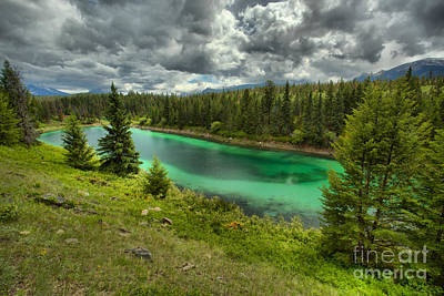 Photograph - Green Pool In The Jasper Lush Forest by Adam Jewell