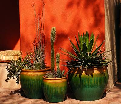 Marilyn Photograph - Green Pots by Marilyn Smith