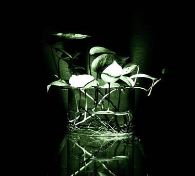 Photograph - Green by Rajiv Chopra