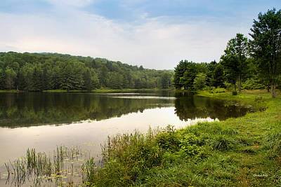 Photograph - Green Reflection Landscape by Christina Rollo