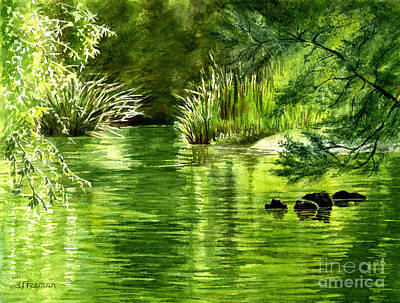 Green Reflections With Sunlit Grass Original by Sharon Freeman