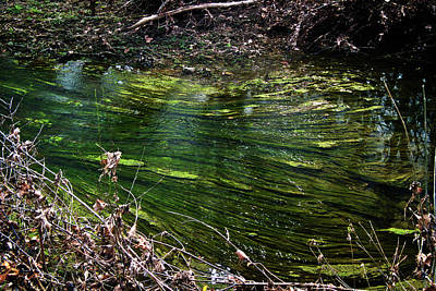 Photograph - Green River by George Taylor