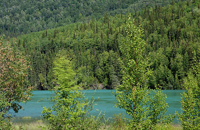 Photograph - Green River by Gloria Anderson