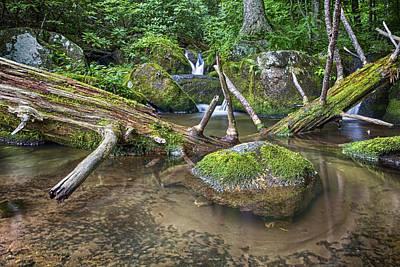 Photograph - Green Rock Pool by Alan Raasch