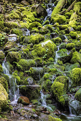 Photograph - Green Rocks And Water by John McGraw
