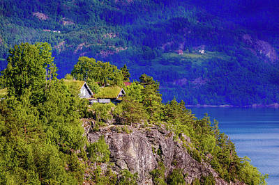 Photograph - Green Roofs Of Lustrafjorden by Dmytro Korol