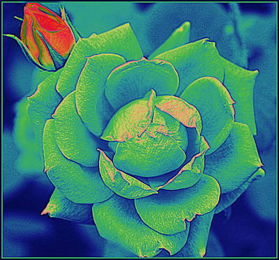 Green Rose Pop Art Original