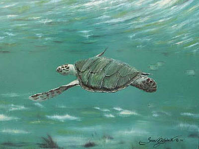 Painting - Green Sea Turtle by Susan Elizabeth Wolding