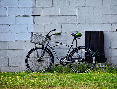 Photograph - Green Seat by Linda Brown