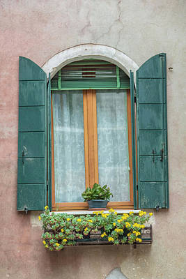 Photograph - Green Shutters And Plant  by John McGraw