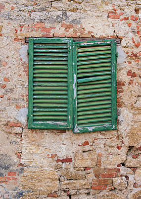 Photograph - Green Shutters On Brick by Michael Blanchette