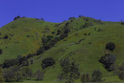 Green Sierra Foothills Print by Garry Gay