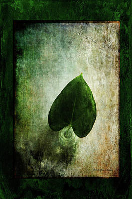 Photograph - Green Simplicity by Randi Grace Nilsberg