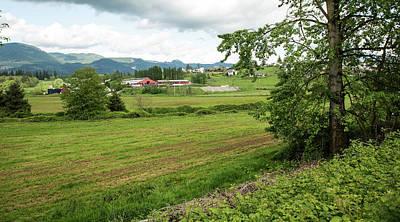 Photograph - Green Skagit Farm Fields by Tom Cochran