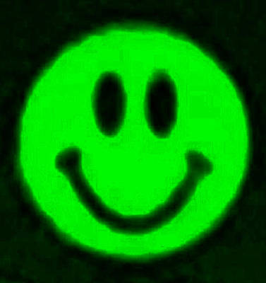 Photograph - Green Smiley by Rob Hans