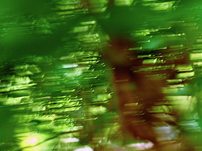 Photograph - Green Speed by Kukka-Maaria Lehto
