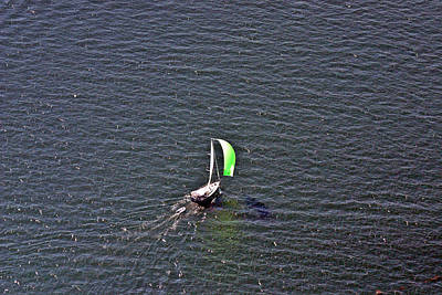 Photograph - Green Spinnaker Sailing 2 by Duncan Pearson