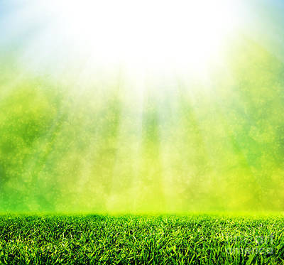 Copy Photograph - Green Spring Grass Against Natural Nature Blur by Michal Bednarek
