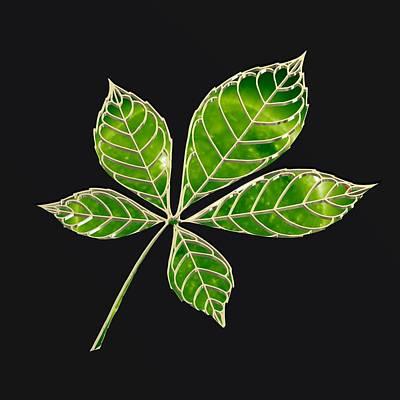 Flowers Digital Art - Green Star Leaft by Alberto RuiZ