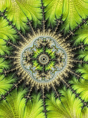 Photograph - Green Star by Ronda Broatch