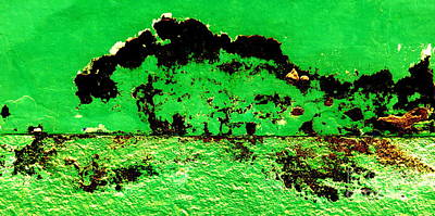 Photograph - Green Storm by Randall Weidner