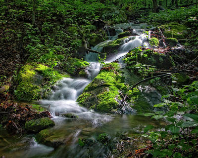 Photograph - Green Stream by Alan Raasch