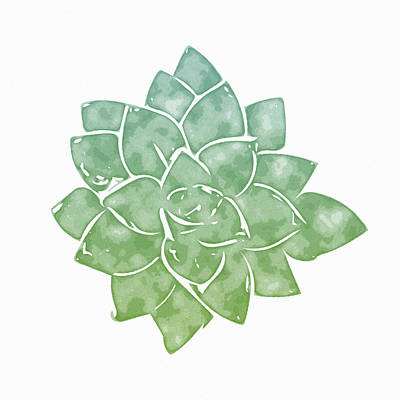 Illustration Mixed Media - Green Succulent 1- Art By Linda Woods by Linda Woods