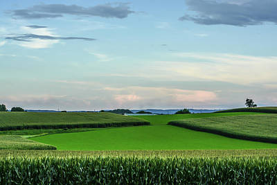 Photograph - Green Summer With Colorful Sky by Tana Reiff