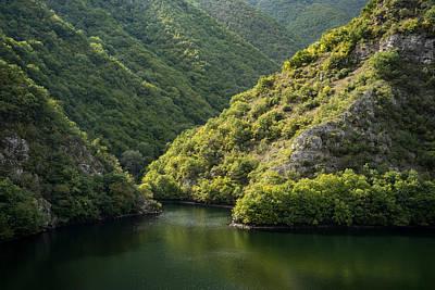 Photograph - Green Sylvan Mountains Tumbling Into A Forest Lake by Georgia Mizuleva
