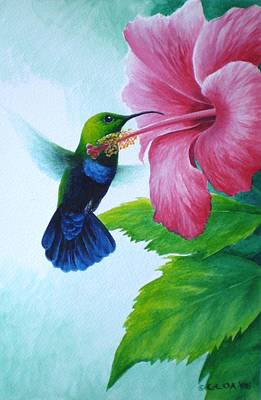 Painting - Green-throated Carib And Pink Hibiscus by Christopher Cox