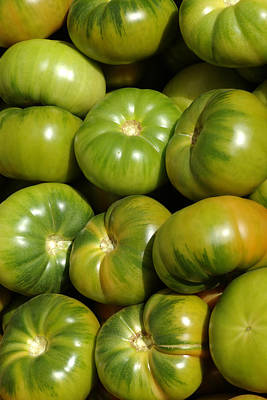 Green Tomatoes Art Print by Frank Tschakert