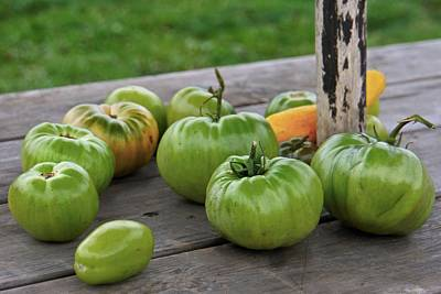 Photograph - Green Tomatoes by Patricia Strand