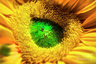 Photograph - Green Topaz by Rick Bragan